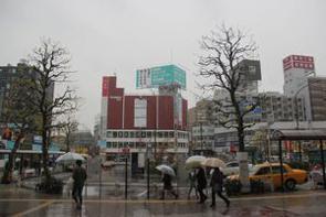 中国のポータルサイト・騰訊網に21日「どうして日本語学校は東京の新宿区に集中しているのか」とする記事が掲載された。