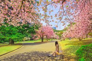 「人に迷惑をかけない」ことが美徳の1つとなっている日本。多くの中国人も「人に迷惑をかけない」のは良いことだと認めるが、日本人は極端すぎだと感じるようだ。(イメージ写真提供:123RF)